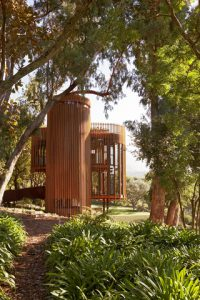 Residential Category Winner: The Tree House Constantia. Steelwork Contractor: Link Engineering